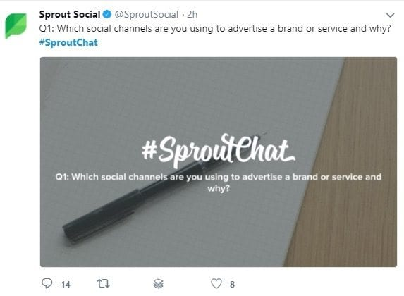 sproutchat twitter questions